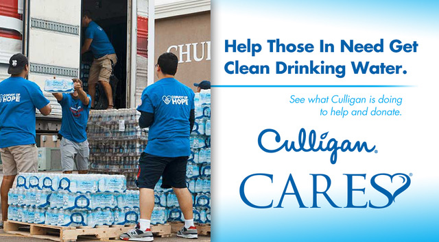 Culligan Cares Tampa